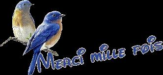 Bon Anniversaire Amicalementbirds  - Page 2 Mille_11