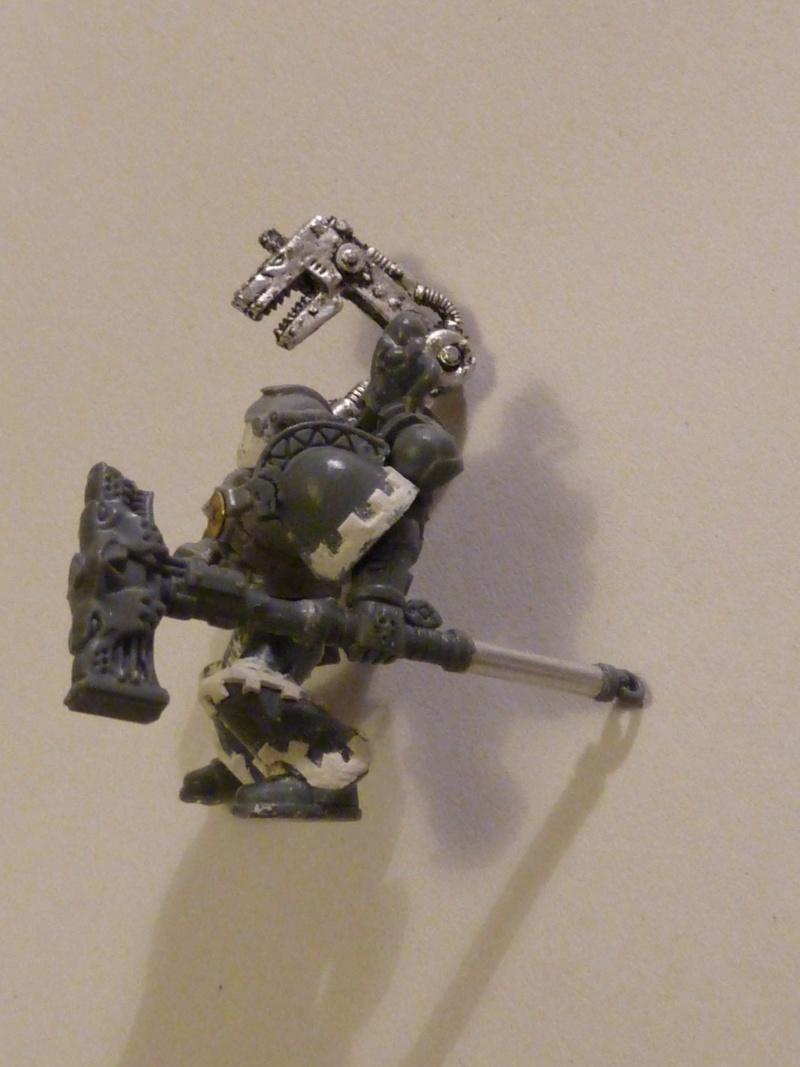 Galerie de Alonwolf P1040215
