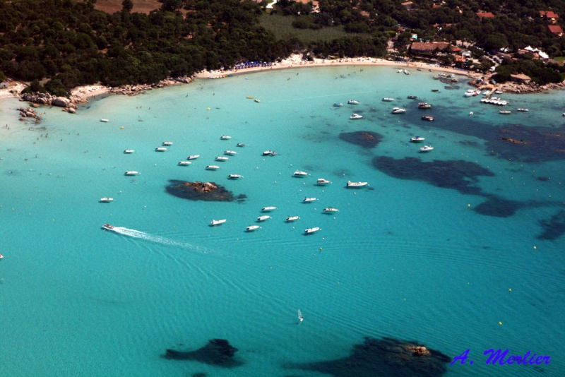 Corsica : Les JA sur l'Ile de Beauté ? - Page 7 Img_1510