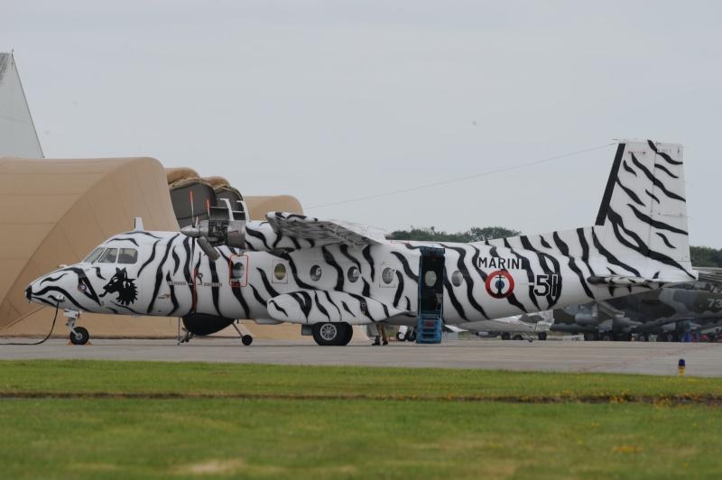 DEBRIEFING NATO TIGER MEET LANDIVISIAU 2008 Tiger_13