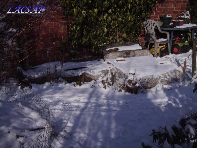 Relevés des températures dans un de nos parcs avec boettgeri en BEL Img_9010