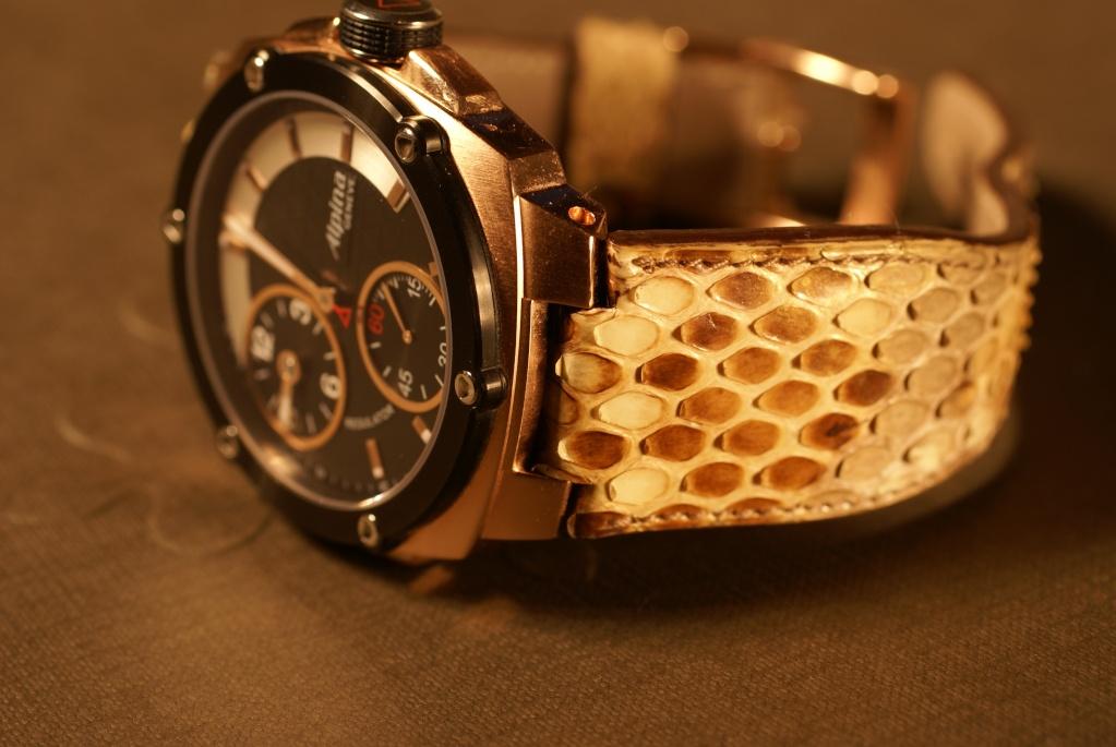 conseil sur un bracelet de montre Dsc04032