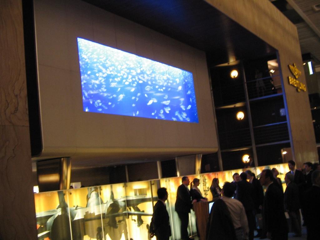 Les poissons de l'aquarium Breitling de Bâle.... Img_2037