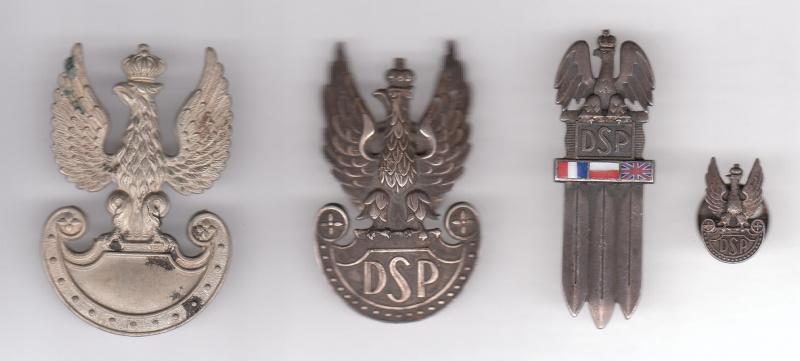 insignes Polonais Insign72