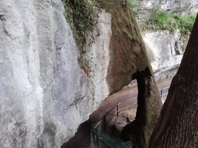 [Lucos dans le 74] Annecy  Photo012