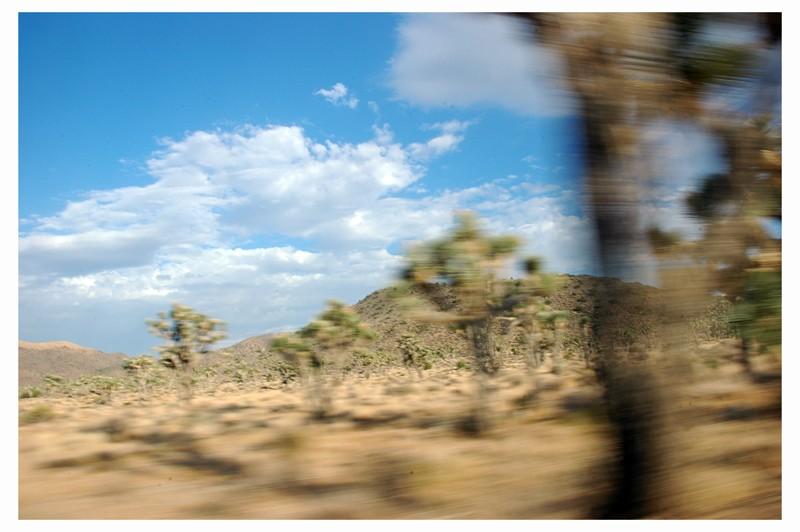 Desert Dsc_0422