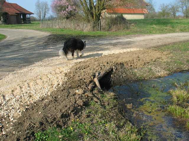 Travaux communaux aux Vaux Img_1339