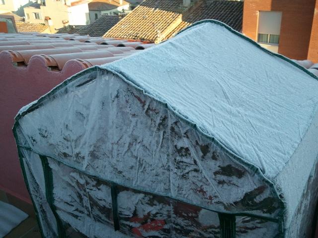 ola de frio 2012-020