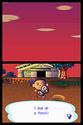 Animal Crossing Wild World Ancrds14