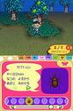 Animal Crossing Wild World Ancrds16