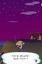 Animal Crossing Wild World Ancrds18