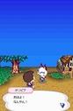Animal Crossing Wild World Ancrds19