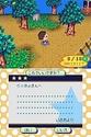 Animal Crossing Wild World Ancrds24