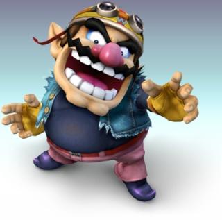 Listing en image des personnages SSBB Wario10