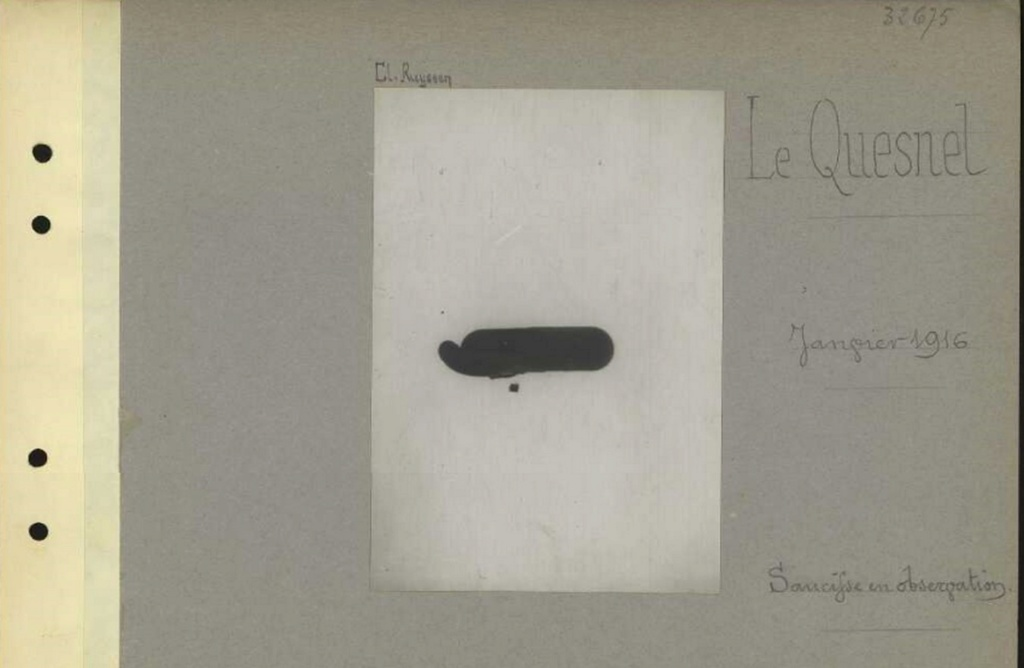 1916 PHOTOS provenant des albums VALOIS : CONVOI D'ânes Sans_t50