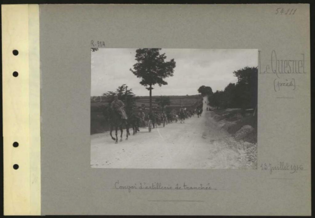 1916 PHOTOS provenant des albums VALOIS : CONVOI D'ânes Sans_t53