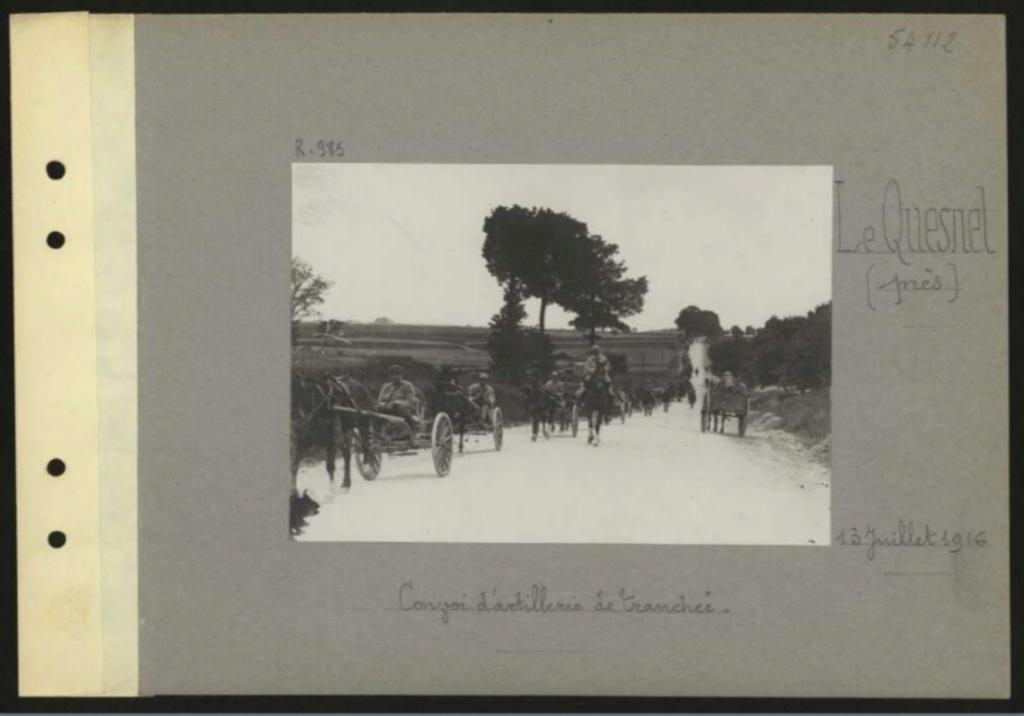 1916 PHOTOS provenant des albums VALOIS : CONVOI D'ânes Sans_t54