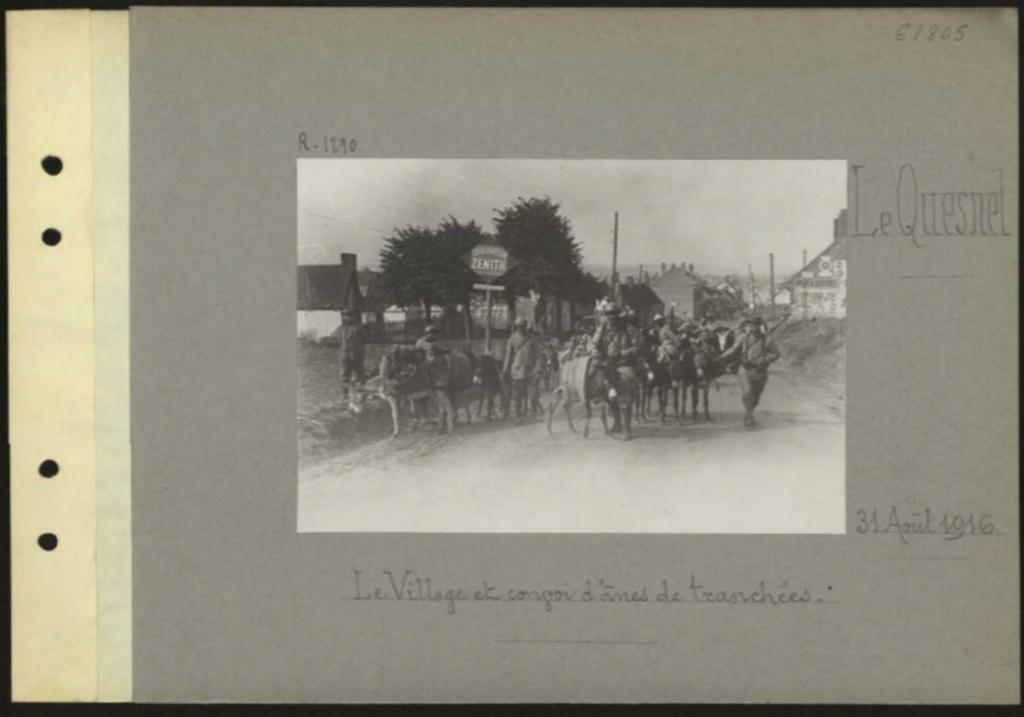 1916 PHOTOS provenant des albums VALOIS : CONVOI D'ânes Sans_t66