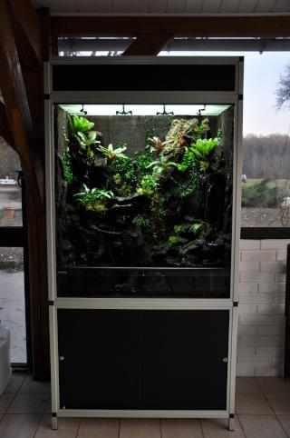 "Terrarium tropical humide by ""Le Pelu"" 712"