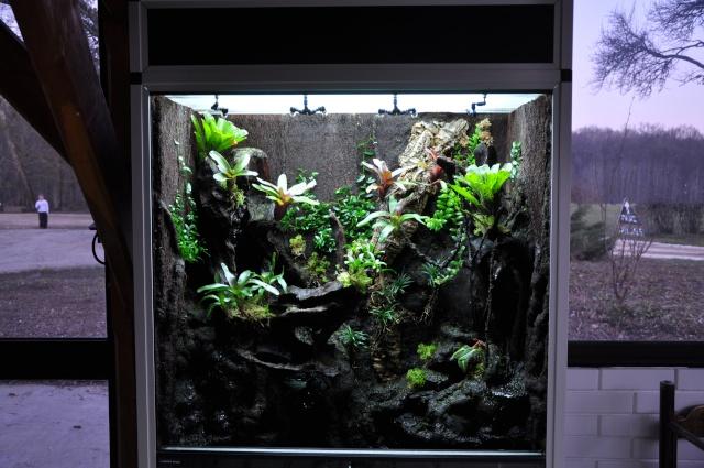 "Terrarium tropical humide by ""Le Pelu"" 813"