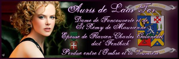 Extrait de Service-public.fr sur la liberté d'expression Aurisb10