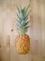 Bouture de tête Ananas comosus Ananas10