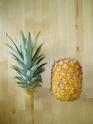 Bouture de tête Ananas comosus Ananas11
