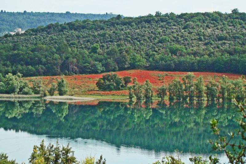 Début juin 2008 en Haute Provence - 1 Lac_de10