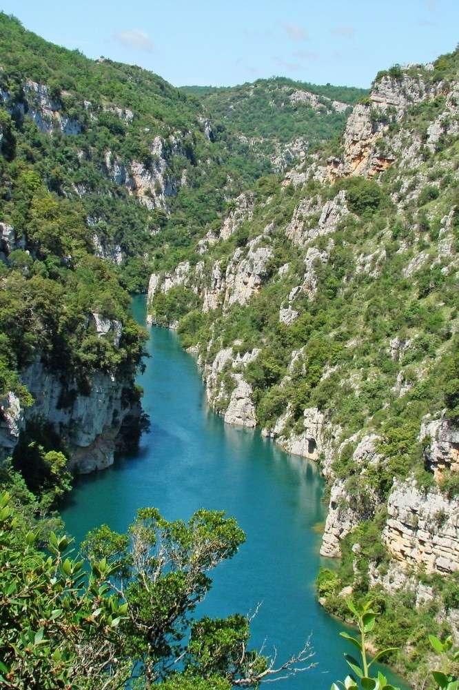 Début juin 2008 en Haute Provence - 1 Le_ver10