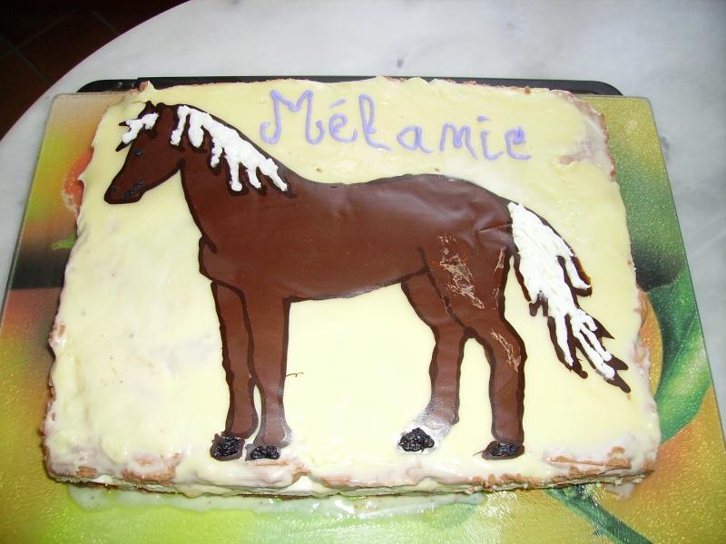 cheval, zèbre et licorne Cheval10