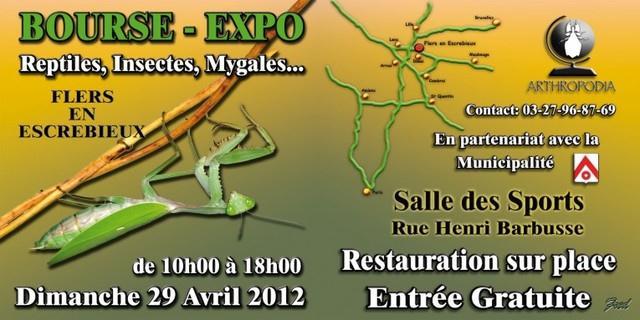 """Bourse expo """"Flers en escrébieux"""" Bandea10"""