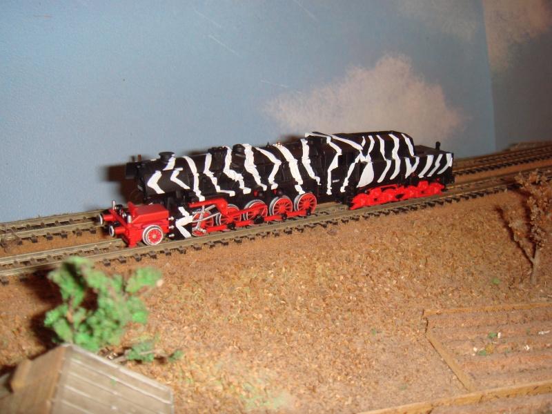 TRAINS BLINDES ET SUR RAILS Dsc05716