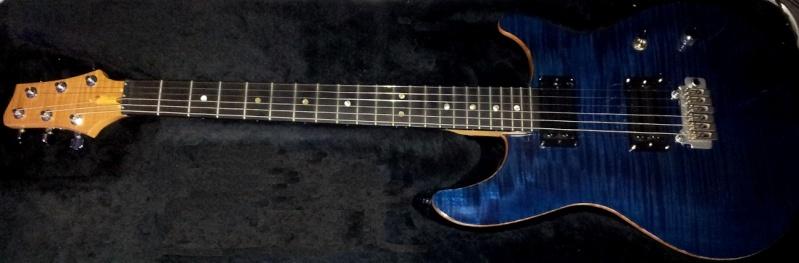 Photos de vos guitares. [Ancien Topic 2] - Page 38 Warmot10