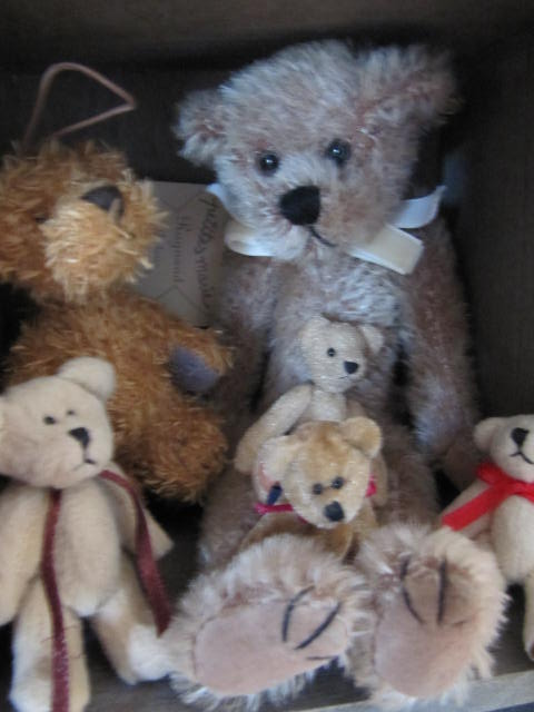 ma famille OURS Img_0849