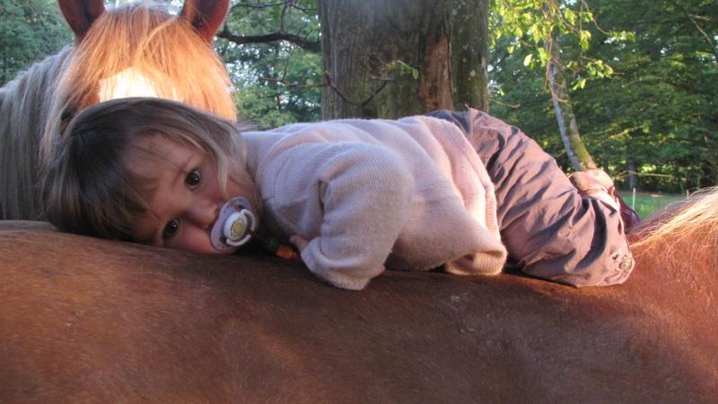 Concours Photo Novembre : Le Cheval et l'Humain, en toute Complicité 25_07_12