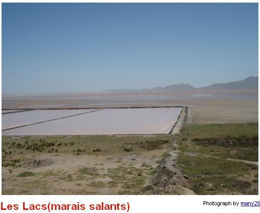 Les lacs salés de AIN MLILAl Les_la16