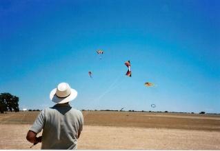Primera exhibicion de deportes aereos villa de La Roda - Alb Roda_210