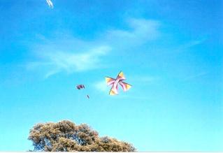 Primera exhibicion de deportes aereos villa de La Roda - Alb Roda_810