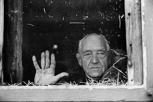 Andrew Wyeth [peintre] A2128