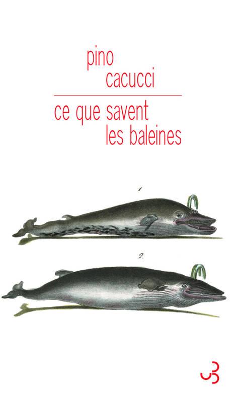 La baleine, dans tous ces livres... A3579