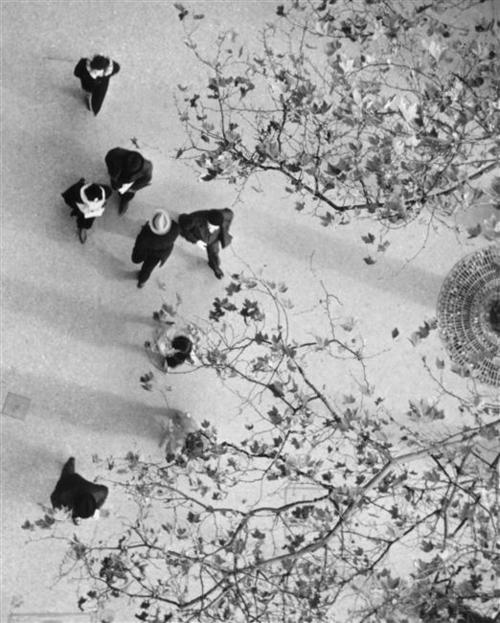 André Kertész [Photographe] - Page 2 A4231
