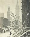 Alfred Stieglitz [photographe] A1172