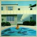 David Hockney A549