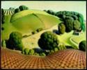 Grant Wood [peintre] A914