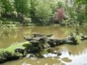 Parc Oriental - Maulévrier Ab_04310