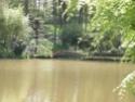 Parc Oriental - Maulévrier Ab_05610