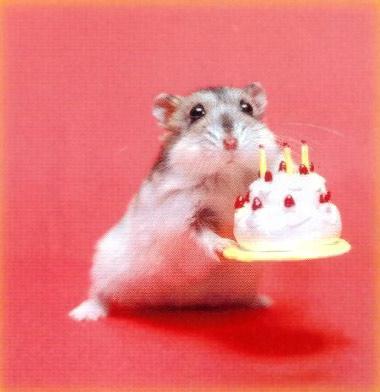 Felicitando a mittzy por su cumpleaños Feliz-12