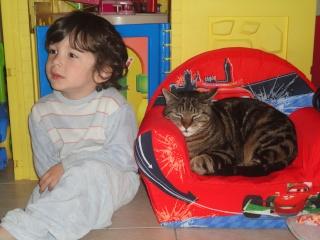 Moi Simba, un gros chat... Dsc00819