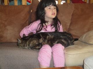 Moi Simba, un gros chat... Dsc00821