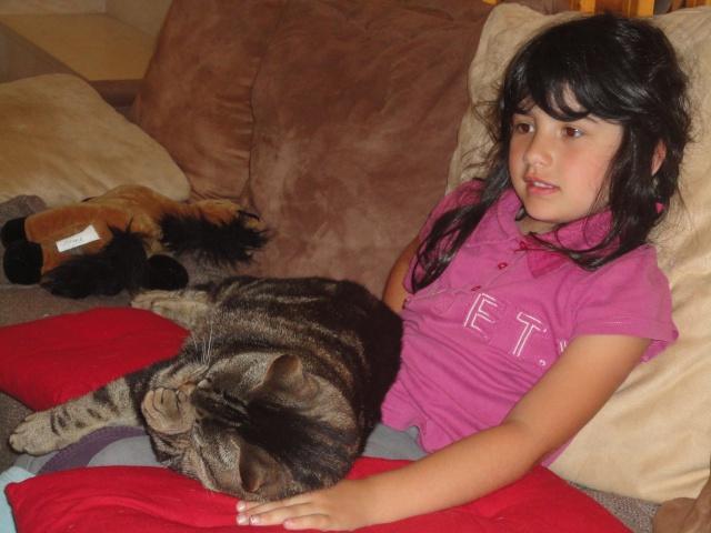 Moi Simba, un gros chat... Dsc00910